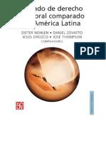 2007  Tratado de Derecho Electoral comparado de América Latina. Voto Electrónico