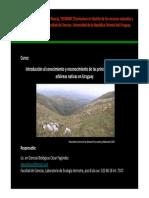 Clase7 Biodiversidad y Conservacion2010
