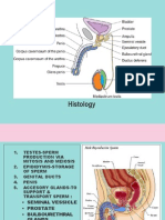 Tutorial Histologi