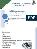 Pilas de Combustible de Carbonato Fundido (MCFC