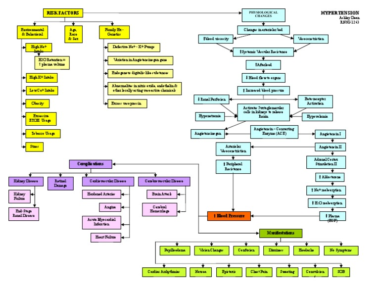 Burns Pathophysiology Concept Map This Is What This