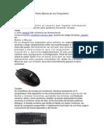 Partes Básicas de Una Computadora