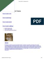 Razas de Gatos - MundoAnimalia
