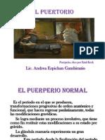 EL PUERPERIO.pptx
