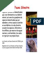 Fauna Silvestre Recursos 1