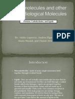 bio 201 lab presentation-macromolecules