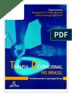 Terapia Ocupacional No Brasil - Marysia Prado