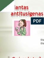 Presentacion Final Fitoterapia