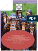 primate used in research