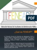 Presentación FENEAP Chile 2014
