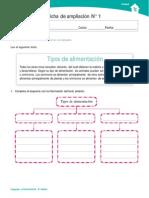 Ficha Organizador