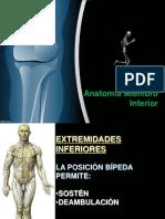 Traumatologia Miembroinferior 130623172633 Phpapp01