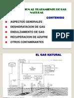 01 Introduccion Tratamiento de Gas