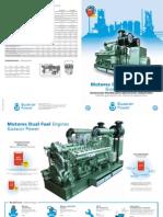 Folleto Dual Fuel 1-04-09