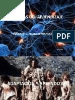Adaptacion y Aprendizaje