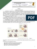 BioFFormativa1VersãoA (1)