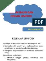 1. Sistem Imun Dan Organ Limfoid