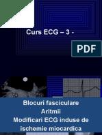 ECG_curs_3