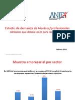 Presentacion Resultados Encuesta Educacion Anje - Demanda Rrhh Del Sector Empresarial