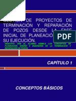 Gestión de Proyectos de Terminación y Reparación.pptx
