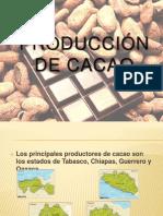 Diapositivas Trabajo Final Cacao