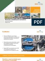 Remocion estabilizacion arsenico (Ecometales)