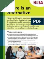 H&SA The is an Alternative programme flier