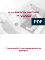 Terminologia Patologia y Molecular