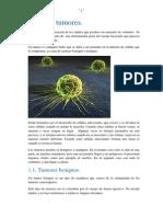 Los tumores.docx