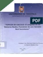 Topicos de Calculos _El Conjunto de Los Numeros Reales, Funciones de Una Variable Real Sucesiones