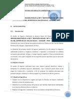 Estudio de Impacto Ambiental Estanco de La Sal_pampa Grande