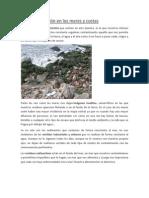 La contaminación en los mares y costas