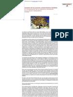Corominas 09 12 2012 - El aumento de los precios.pdf