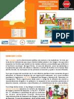 Guía de funciones de los Centros de Operaciones y Emergencias Municipales (COEM)