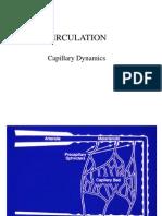 Capillary Dynamics