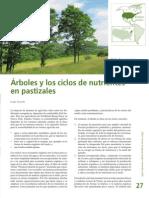 Arboles y Ciclos de Nutrientes en Pastizales Leisa