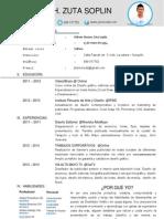 Curriculum Vitae 2014 JHUNIOR ZUTA