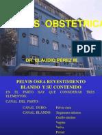 01. Ppa.pelvis Obst.2011