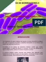 diseodeunprocesodebiopelicula-131003190546-phpapp02