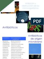 5._Antibioticos