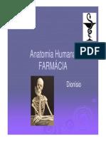 Anatomia Óssea [Modo de Compatibilidade]