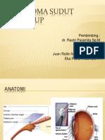 Referat Glaukoma Sudut Tertutup