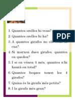 Text Problemes Visuals