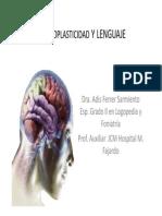 Neuroplasticidad y Lenguaje 1