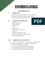 InformeFísicaNº02(InvestigandounfenómenodelanaturalezaPéndulo)