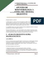 Apuntes de Gastroenterologia 1 Anatomia Del Sistema Digestivo