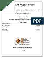 Final Report Capstone MEC 494 (1)