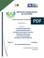 Reporte Bioquimica 3
