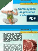 Cómo Ayudan Las Proteínas a Adelgazar