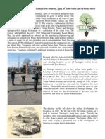 Tree Toga article final.pdf